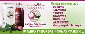 ace-maxs2fyf